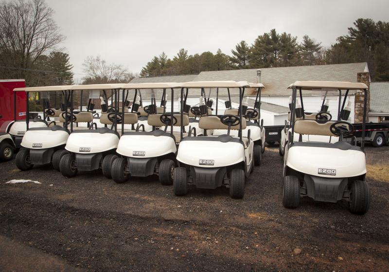2011 EZ-GO RXV Gas Golf Cart