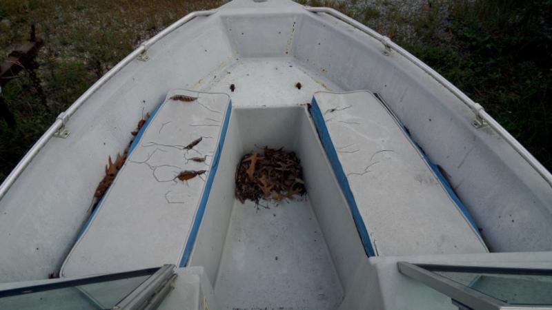1989 Lowe Boats Lowe HIGHWINDS