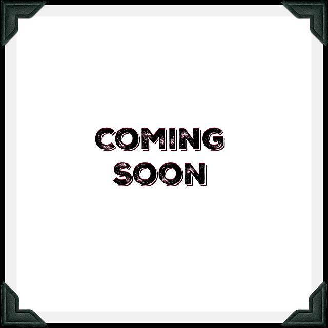 24' PJ Equipment Trailer (CC)