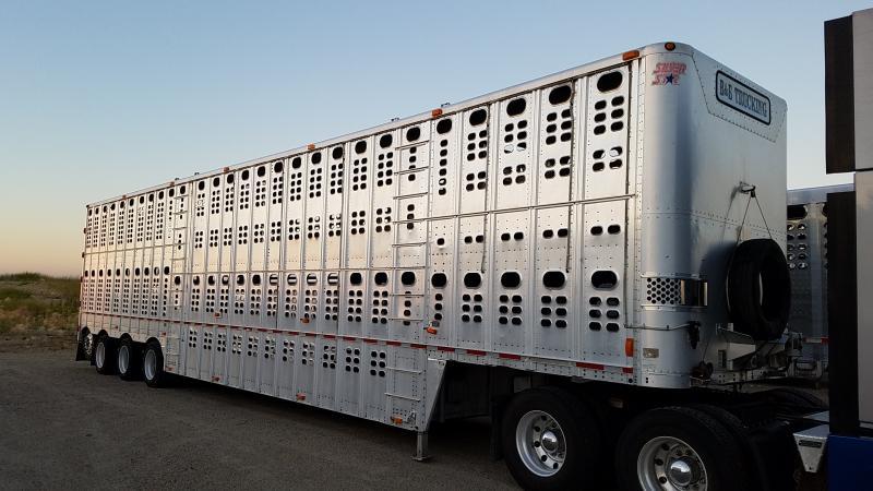 2008 Wilson 53' Quad Livestock Semi Trailer