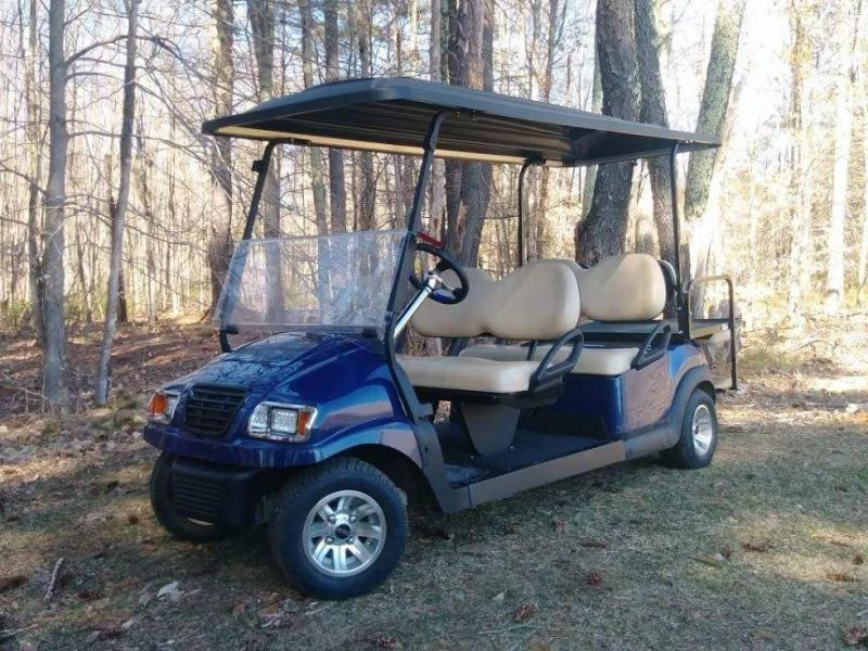 SAVE!Winter Sale! 2014 Custom Precedent 6 P LIMO golf cart ... on limo golf cart rims, limo golf cart kits, limo golf cart parts,