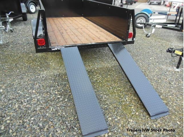 Custom 2018 Iron Eagle 5x8 Voyager Series Utility Trailer - Split Ramp Combo Tailgate