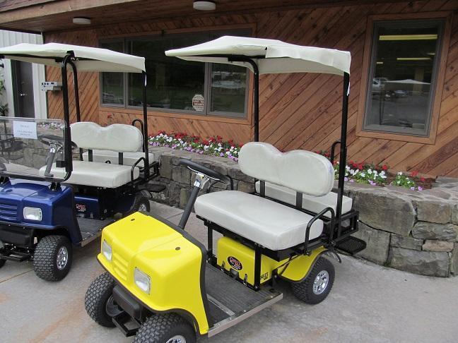 Cricket Sx3 Electric Sport Vehicle Golf Cart Horse Stock